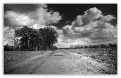 Unpaved Road UltraHD Wallpaper for Wide 16:10 5:3 Widescreen WHXGA WQXGA WUXGA WXGA WGA ; 8K UHD TV 16:9 Ultra High Definition 2160p 1440p 1080p 900p 720p ; Standard 4:3 5:4 3:2 Fullscreen UXGA XGA SVGA QSXGA SXGA DVGA HVGA HQVGA ( Apple PowerBook G4 iPhone 4 3G 3GS iPod Touch ) ; Tablet 1:1 ; iPad 1/2/Mini ; Mobile 4:3 5:3 3:2 16:9 5:4 - UXGA XGA SVGA WGA DVGA HVGA HQVGA ( Apple PowerBook G4 iPhone 4 3G 3GS iPod Touch ) 2160p 1440p 1080p 900p 720p QSXGA SXGA ; Dual 16:10 5:3 16:9 4:3 5:4 WHXGA WQXGA WUXGA WXGA WGA 2160p 1440p 1080p 900p 720p UXGA XGA SVGA QSXGA SXGA ;