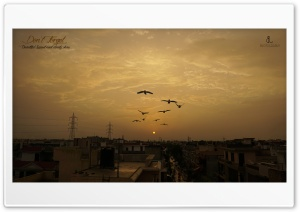Urban Dawn HD Wide Wallpaper for Widescreen