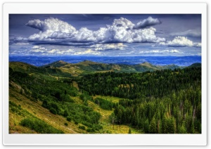Utah Forest Clouds HD Wide Wallpaper for Widescreen
