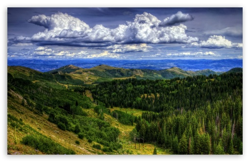 Download Utah Forest Clouds HD Wallpaper