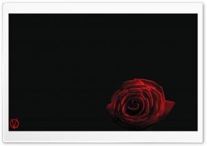 V For Vendetta Rose Ultra HD Wallpaper for 4K UHD Widescreen desktop, tablet & smartphone