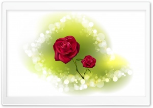 Valentine Roses HD Wide Wallpaper for Widescreen