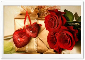Valentine's Day Gift 2013 HD Wide Wallpaper for Widescreen