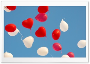 Valentines Day Heart Balloons HD Wide Wallpaper for Widescreen