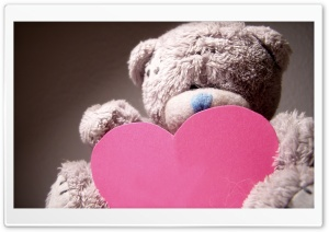 Valentines Day Teddy Bear HD Wide Wallpaper for 4K UHD Widescreen desktop & smartphone