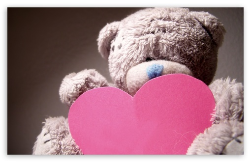 Download Valentines Day Teddy Bear HD Wallpaper