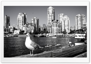 Vancouver HD Wide Wallpaper for Widescreen