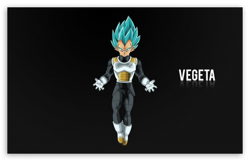 Vegeta ❤ 4K UHD Wallpaper for Wide 16:10 5:3 Widescreen WHXGA WQXGA WUXGA WXGA WGA ; 4K UHD 16:9 Ultra High Definition 2160p 1440p 1080p 900p 720p ; Standard 4:3 3:2 Fullscreen UXGA XGA SVGA DVGA HVGA HQVGA ( Apple PowerBook G4 iPhone 4 3G 3GS iPod Touch ) ; Smartphone 16:9 3:2 5:3 2160p 1440p 1080p 900p 720p DVGA HVGA HQVGA ( Apple PowerBook G4 iPhone 4 3G 3GS iPod Touch ) WGA ; iPad 1/2/Mini ; Mobile 4:3 5:3 3:2 16:9 - UXGA XGA SVGA WGA DVGA HVGA HQVGA ( Apple PowerBook G4 iPhone 4 3G 3GS iPod Touch ) 2160p 1440p 1080p 900p 720p ;