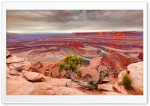 View of the Colorado River and Canyonlands National Park from Dead Horse Point HD Wide Wallpaper for Widescreen