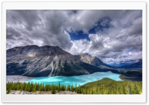 View of the Peyto glacier fed Lake, Banff National Park HD Wide Wallpaper for Widescreen