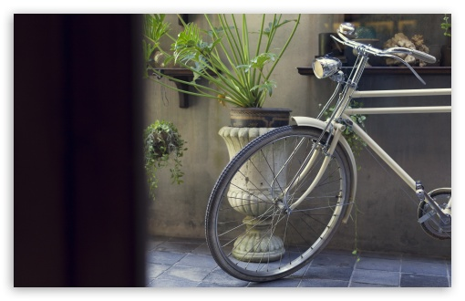 Vintage Bicycle ❤ 4K UHD Wallpaper for Wide 16:10 5:3 Widescreen WHXGA WQXGA WUXGA WXGA WGA ; 4K UHD 16:9 Ultra High Definition 2160p 1440p 1080p 900p 720p ; UHD 16:9 2160p 1440p 1080p 900p 720p ; Standard 4:3 5:4 3:2 Fullscreen UXGA XGA SVGA QSXGA SXGA DVGA HVGA HQVGA ( Apple PowerBook G4 iPhone 4 3G 3GS iPod Touch ) ; Tablet 1:1 ; iPad 1/2/Mini ; Mobile 4:3 5:3 3:2 16:9 5:4 - UXGA XGA SVGA WGA DVGA HVGA HQVGA ( Apple PowerBook G4 iPhone 4 3G 3GS iPod Touch ) 2160p 1440p 1080p 900p 720p QSXGA SXGA ;