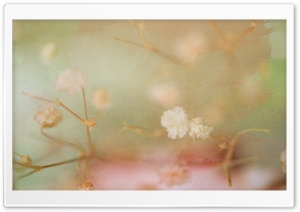Vintage Flower Background HD Wide Wallpaper for Widescreen