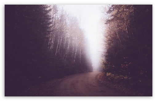 Vintage Foggy Forest Road ❤ 4K UHD Wallpaper for Wide 16:10 5:3 Widescreen WHXGA WQXGA WUXGA WXGA WGA ; 4K UHD 16:9 Ultra High Definition 2160p 1440p 1080p 900p 720p ; UHD 16:9 2160p 1440p 1080p 900p 720p ; Standard 4:3 5:4 3:2 Fullscreen UXGA XGA SVGA QSXGA SXGA DVGA HVGA HQVGA ( Apple PowerBook G4 iPhone 4 3G 3GS iPod Touch ) ; Smartphone 5:3 WGA ; Tablet 1:1 ; iPad 1/2/Mini ; Mobile 4:3 5:3 3:2 16:9 5:4 - UXGA XGA SVGA WGA DVGA HVGA HQVGA ( Apple PowerBook G4 iPhone 4 3G 3GS iPod Touch ) 2160p 1440p 1080p 900p 720p QSXGA SXGA ; Dual 16:10 5:3 16:9 4:3 5:4 WHXGA WQXGA WUXGA WXGA WGA 2160p 1440p 1080p 900p 720p UXGA XGA SVGA QSXGA SXGA ;