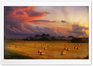Vintage Harvest HD Wide Wallpaper for Widescreen