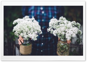 Vintage Wedding Flowers in Jars HD Wide Wallpaper for Widescreen