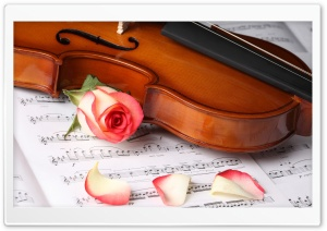 Violin Ultra HD Wallpaper for 4K UHD Widescreen desktop, tablet & smartphone