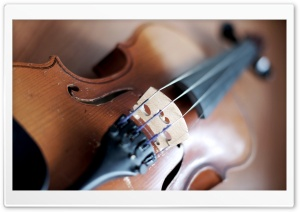 Violin HD Wide Wallpaper for Widescreen