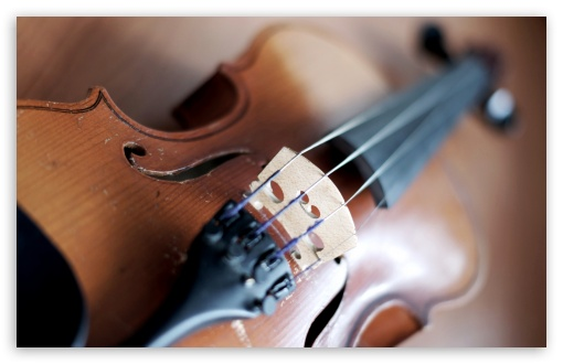 Violin ❤ 4K UHD Wallpaper for Wide 16:10 5:3 Widescreen WHXGA WQXGA WUXGA WXGA WGA ; Standard 4:3 5:4 3:2 Fullscreen UXGA XGA SVGA QSXGA SXGA DVGA HVGA HQVGA ( Apple PowerBook G4 iPhone 4 3G 3GS iPod Touch ) ; iPad 1/2/Mini ; Mobile 4:3 5:3 3:2 5:4 - UXGA XGA SVGA WGA DVGA HVGA HQVGA ( Apple PowerBook G4 iPhone 4 3G 3GS iPod Touch ) QSXGA SXGA ;