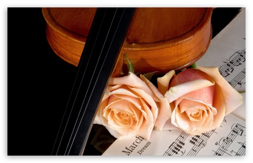 Violin And Peach Roses HD wallpaper for Wide 16:10 5:3 Widescreen WHXGA WQXGA WUXGA WXGA WGA ; HD 16:9 High Definition WQHD QWXGA 1080p 900p 720p QHD nHD ; Standard 4:3 5:4 3:2 Fullscreen UXGA XGA SVGA QSXGA SXGA DVGA HVGA HQVGA devices ( Apple PowerBook G4 iPhone 4 3G 3GS iPod Touch ) ; iPad 1/2/Mini ; Mobile 4:3 5:3 3:2 16:9 5:4 - UXGA XGA SVGA WGA DVGA HVGA HQVGA devices ( Apple PowerBook G4 iPhone 4 3G 3GS iPod Touch ) WQHD QWXGA 1080p 900p 720p QHD nHD QSXGA SXGA ;
