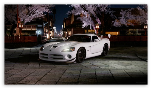 Viper HD wallpaper for HD 16:9 High Definition WQHD QWXGA 1080p 900p 720p QHD nHD ; UHD 16:9 WQHD QWXGA 1080p 900p 720p QHD nHD ; Tablet 1:1 ; Mobile 16:9 - WQHD QWXGA 1080p 900p 720p QHD nHD ;