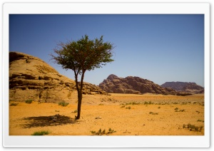 Wadi Rum Ultra HD Wallpaper for 4K UHD Widescreen desktop, tablet & smartphone