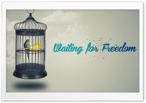 Waiting for Freedom HD Wide Wallpaper for Widescreen