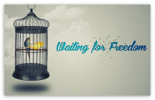 Waiting for Freedom ❤ 4K UHD Wallpaper for Wide 16:10 5:3 Widescreen WHXGA WQXGA WUXGA WXGA WGA ; 4K UHD 16:9 Ultra High Definition 2160p 1440p 1080p 900p 720p ; Smartphone 16:9 2160p 1440p 1080p 900p 720p ; Mobile 5:3 16:9 - WGA 2160p 1440p 1080p 900p 720p ;