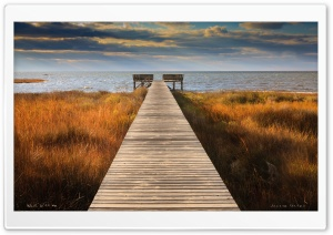 Walk With Me Ultra HD Wallpaper for 4K UHD Widescreen desktop, tablet & smartphone