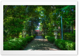 Walking Towards The Shinto Shrine HD Wide Wallpaper for Widescreen