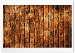 Wall Bricks HD Wide Wallpaper for Widescreen