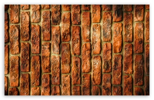 Wall Bricks ❤ 4K UHD Wallpaper for Wide 16:10 5:3 Widescreen WHXGA WQXGA WUXGA WXGA WGA ; 4K UHD 16:9 Ultra High Definition 2160p 1440p 1080p 900p 720p ; Standard 4:3 5:4 3:2 Fullscreen UXGA XGA SVGA QSXGA SXGA DVGA HVGA HQVGA ( Apple PowerBook G4 iPhone 4 3G 3GS iPod Touch ) ; Tablet 1:1 ; iPad 1/2/Mini ; Mobile 4:3 5:3 3:2 16:9 5:4 - UXGA XGA SVGA WGA DVGA HVGA HQVGA ( Apple PowerBook G4 iPhone 4 3G 3GS iPod Touch ) 2160p 1440p 1080p 900p 720p QSXGA SXGA ;