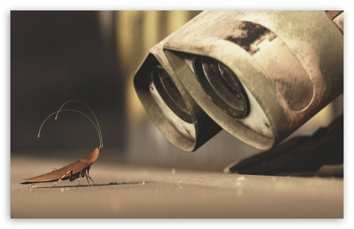Wall E And A Cricket ❤ 4K UHD Wallpaper for Wide 16:10 5:3 Widescreen WHXGA WQXGA WUXGA WXGA WGA ; 4K UHD 16:9 Ultra High Definition 2160p 1440p 1080p 900p 720p ; Standard 4:3 3:2 Fullscreen UXGA XGA SVGA DVGA HVGA HQVGA ( Apple PowerBook G4 iPhone 4 3G 3GS iPod Touch ) ; iPad 1/2/Mini ; Mobile 4:3 5:3 3:2 16:9 - UXGA XGA SVGA WGA DVGA HVGA HQVGA ( Apple PowerBook G4 iPhone 4 3G 3GS iPod Touch ) 2160p 1440p 1080p 900p 720p ;