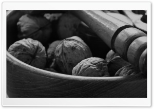 Walnut HD Wide Wallpaper for Widescreen