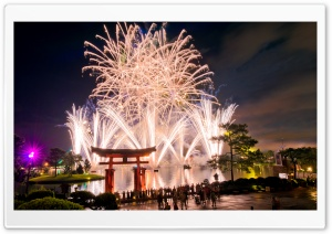 Walt Disney World Fireworks HD Wide Wallpaper for Widescreen