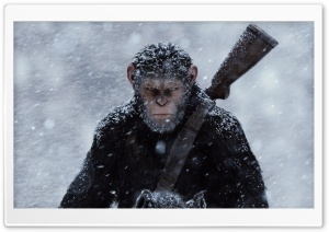 War for the Planet of the Apes 2017 HD Wide Wallpaper for 4K UHD Widescreen desktop & smartphone