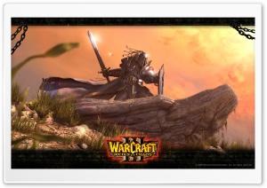Warcraft 3 HD Wide Wallpaper for 4K UHD Widescreen desktop & smartphone