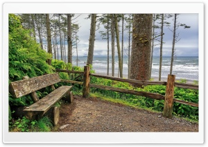 Washington Bench On Coast HD Wide Wallpaper for Widescreen