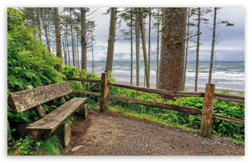 Washington Bench On Coast ❤ 4K UHD Wallpaper for Wide 16:10 5:3 Widescreen WHXGA WQXGA WUXGA WXGA WGA ; 4K UHD 16:9 Ultra High Definition 2160p 1440p 1080p 900p 720p ; Standard 4:3 5:4 3:2 Fullscreen UXGA XGA SVGA QSXGA SXGA DVGA HVGA HQVGA ( Apple PowerBook G4 iPhone 4 3G 3GS iPod Touch ) ; Tablet 1:1 ; iPad 1/2/Mini ; Mobile 4:3 5:3 3:2 16:9 5:4 - UXGA XGA SVGA WGA DVGA HVGA HQVGA ( Apple PowerBook G4 iPhone 4 3G 3GS iPod Touch ) 2160p 1440p 1080p 900p 720p QSXGA SXGA ;