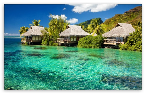 Water Bungalows On A Tropical Island HD wallpaper for Wide 16:10 5:3 Widescreen WHXGA WQXGA WUXGA WXGA WGA ; HD 16:9 High Definition WQHD QWXGA 1080p 900p 720p QHD nHD ; Standard 4:3 5:4 3:2 Fullscreen UXGA XGA SVGA QSXGA SXGA DVGA HVGA HQVGA devices ( Apple PowerBook G4 iPhone 4 3G 3GS iPod Touch ) ; Tablet 1:1 ; iPad 1/2/Mini ; Mobile 4:3 5:3 3:2 16:9 5:4 - UXGA XGA SVGA WGA DVGA HVGA HQVGA devices ( Apple PowerBook G4 iPhone 4 3G 3GS iPod Touch ) WQHD QWXGA 1080p 900p 720p QHD nHD QSXGA SXGA ;