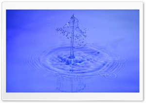 Water Drip HD Wide Wallpaper for Widescreen
