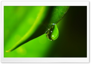 Water Drop Macro HD Wide Wallpaper for Widescreen
