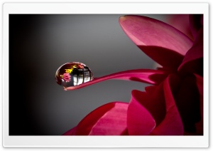 Water Drop Reflection HD Wide Wallpaper for Widescreen