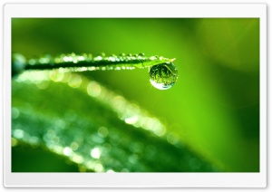 Water Drop Reflection, Macro HD Wide Wallpaper for Widescreen