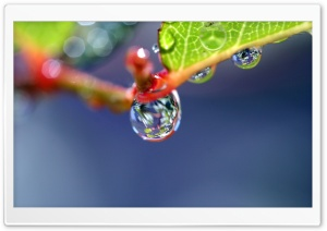 Water Drop Super Macro HD Wide Wallpaper for Widescreen