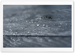 Water Drops On Wood HD Wide Wallpaper for Widescreen