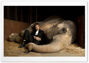 Water For Elephants HD Wide Wallpaper for Widescreen