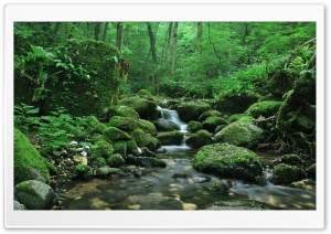Water Stream HD Wide Wallpaper for Widescreen