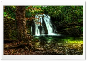 Waterfall Forest HD Wide Wallpaper for Widescreen