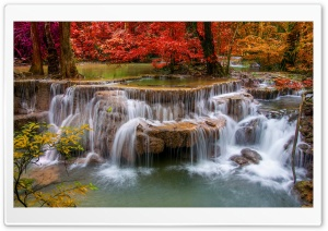 Waterfall, Red Trees HD Wide Wallpaper for 4K UHD Widescreen desktop & smartphone