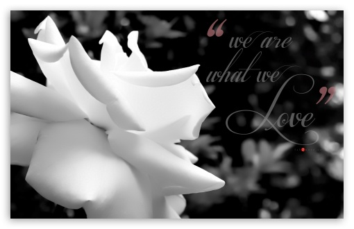 We are what We Love _ Monochrome Soft HD wallpaper for Wide 16:10 5:3 Widescreen WHXGA WQXGA WUXGA WXGA WGA ; HD 16:9 High Definition WQHD QWXGA 1080p 900p 720p QHD nHD ; UHD 16:9 WQHD QWXGA 1080p 900p 720p QHD nHD ; Standard 4:3 5:4 3:2 Fullscreen UXGA XGA SVGA QSXGA SXGA DVGA HVGA HQVGA devices ( Apple PowerBook G4 iPhone 4 3G 3GS iPod Touch ) ; iPad 1/2/Mini ; Mobile 4:3 5:3 3:2 16:9 5:4 - UXGA XGA SVGA WGA DVGA HVGA HQVGA devices ( Apple PowerBook G4 iPhone 4 3G 3GS iPod Touch ) WQHD QWXGA 1080p 900p 720p QHD nHD QSXGA SXGA ;